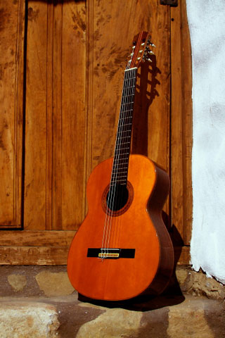 guitar history Guitar - wikipedia the guitar is a fretted musical instrument that usually has six strings the sound is projected either acoustically, using a.